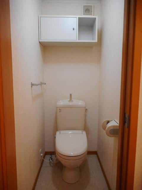 メゾン ソレイユ 201号室のトイレ