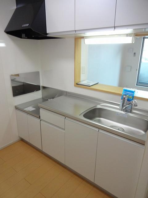 ガ-デンスクエアB 202号室のキッチン