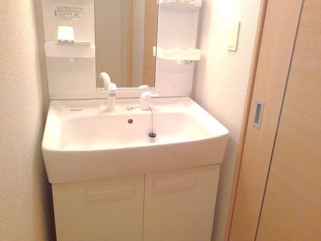 カーサ・セレノC 01010号室の洗面所