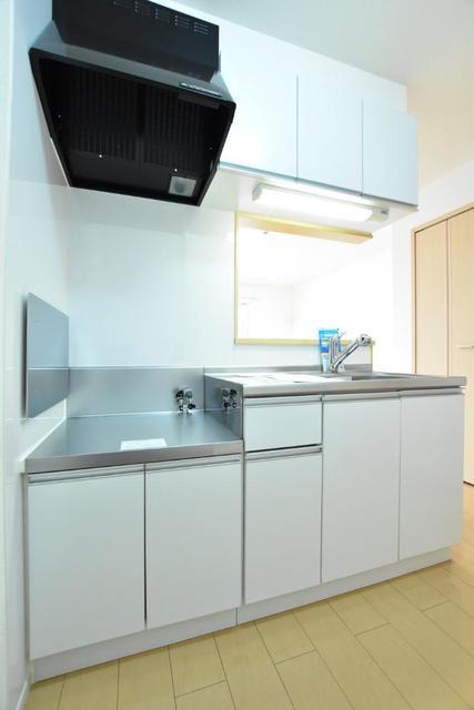 アースリバーD 01010号室のキッチン