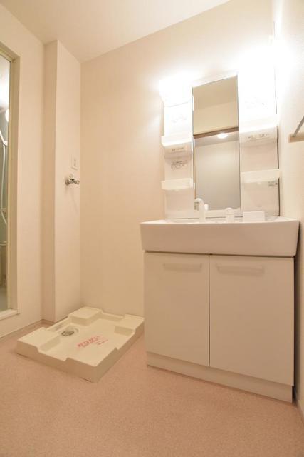 アースリバーD 01010号室の洗面所