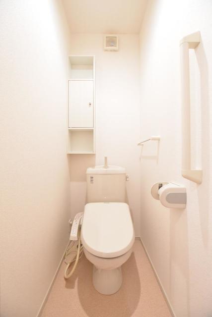 アースリバーD 01010号室のトイレ