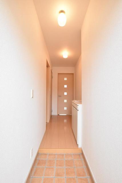 アースリバーD 01010号室の玄関