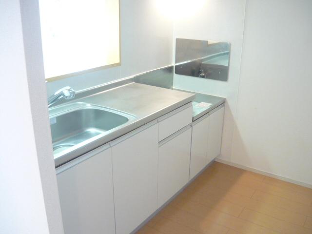 カーサ・セレノD 02010号室のキッチン