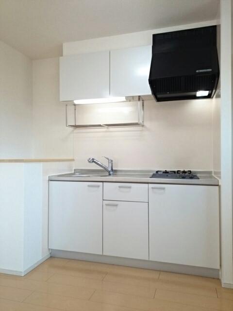 ミルレーヴⅢ 203号室のキッチン