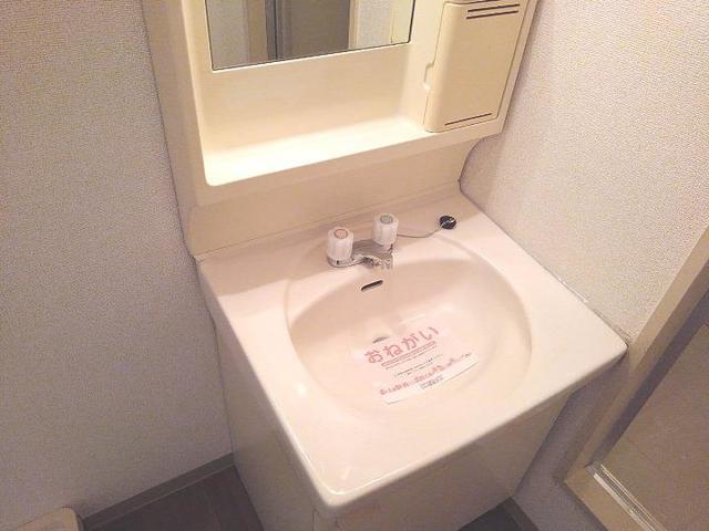 スカイビーンズ広田A 02010号室の洗面所