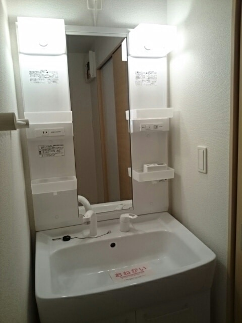 レジェンド B 01010号室の洗面所