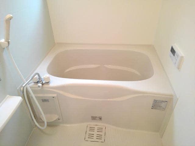 North Frontier 01020号室の風呂