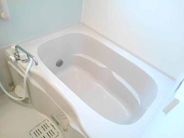 ゴールド・サン 01010号室の風呂