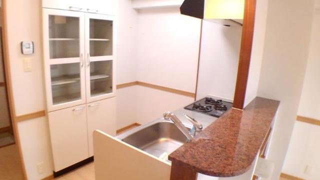エクセレント さくら 301号室のキッチン
