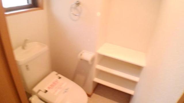 エクセレント さくら 301号室のトイレ
