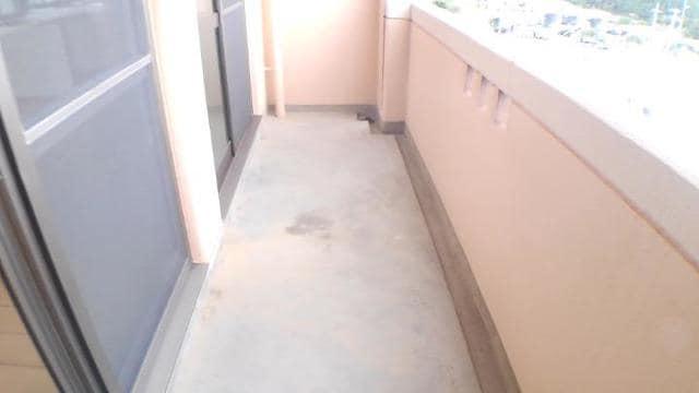 エクセレント さくら 301号室のバルコニー