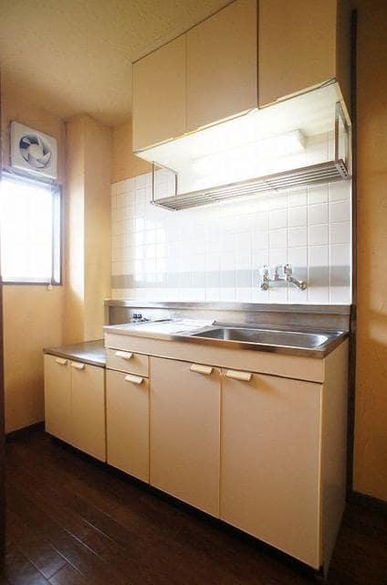 ドリームハイツ 01010号室のキッチン