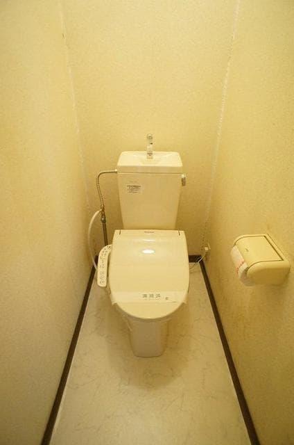 ドリームハイツ 01010号室のトイレ