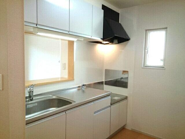 エレガントヒルA 101号室のキッチン