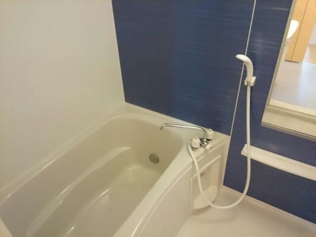 エレガントヒルA 101号室の風呂