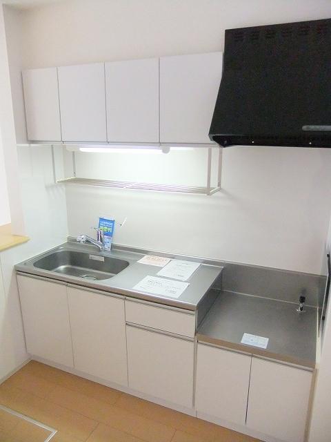 ビリーヴD 01010号室のキッチン