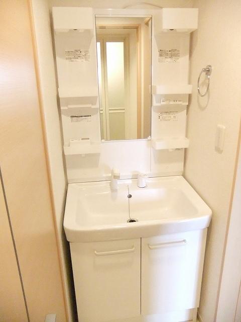 ビリーヴD 01010号室の洗面所