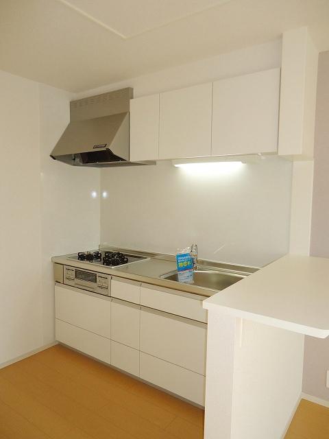 グランド チェリー 202号室のキッチン