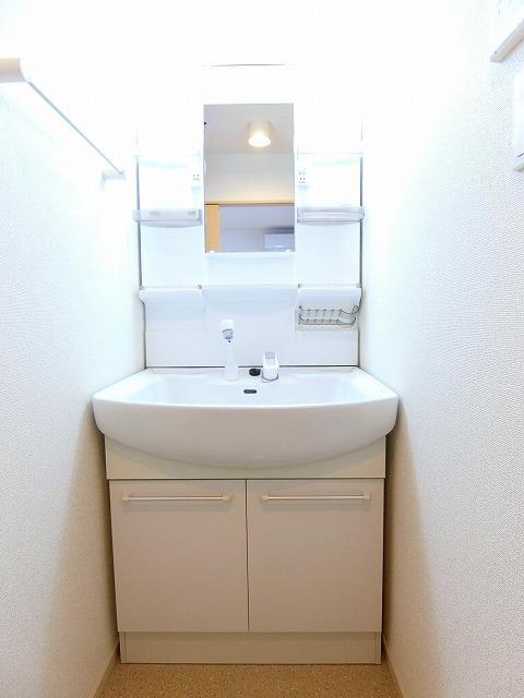 ドマーニ A 03030号室の洗面所