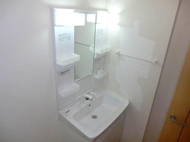 エレガント・ヒルズ 01010号室の洗面所