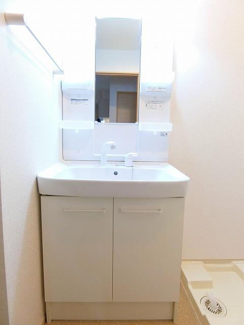 ルピナス・グリーンB 01030号室の洗面所