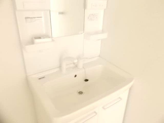 ヴィータ・フェリーチェ 02010号室の洗面所