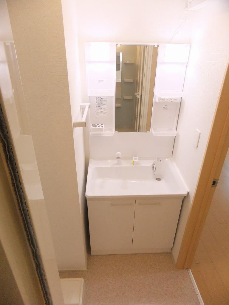 ネクスト サンハイツ 101号室の洗面所