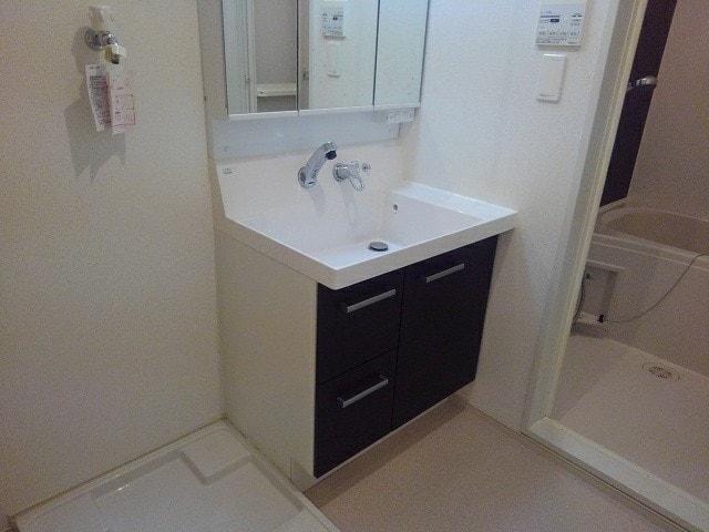ルミエール下鴨 203号室の洗面所