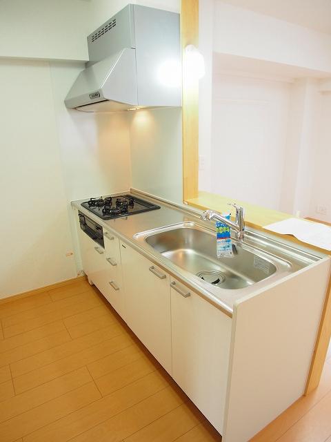 カルムヴィラいさおし 305号室のキッチン