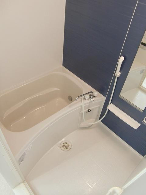 ルガル ボニート 207号室の風呂