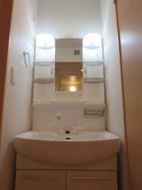 ライフシティ スカイ 01040号室の洗面所