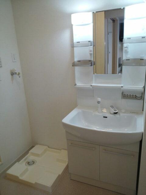 アパートメントこころ 01010号室の洗面所