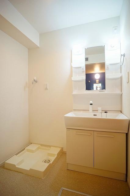 アンジュ・パッセA 02010号室の洗面所