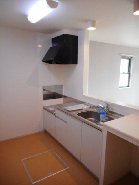 Viola壱番館 101号室のキッチン