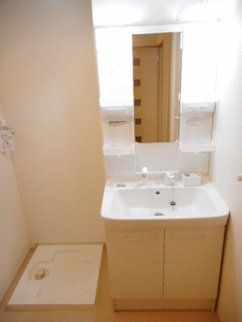 Viola壱番館 101号室の洗面所