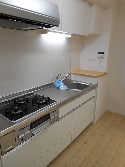 パレス アムールⅡ 408号室のキッチン
