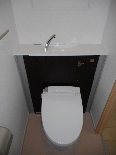 パレス アムールⅡ 408号室のトイレ