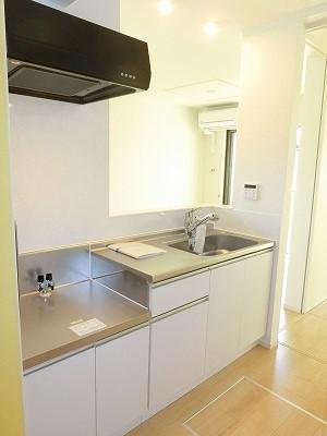 エリーサB 01010号室のキッチン