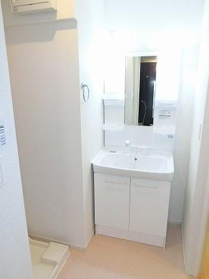 エリーサB 01010号室の洗面所