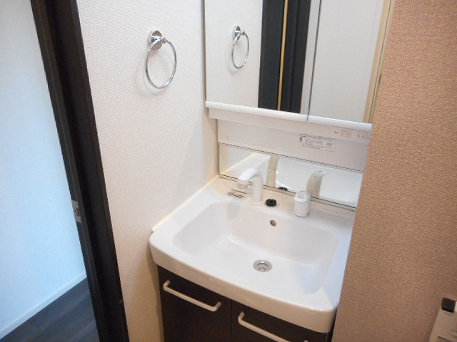 アライブ 国立 103号室の洗面所