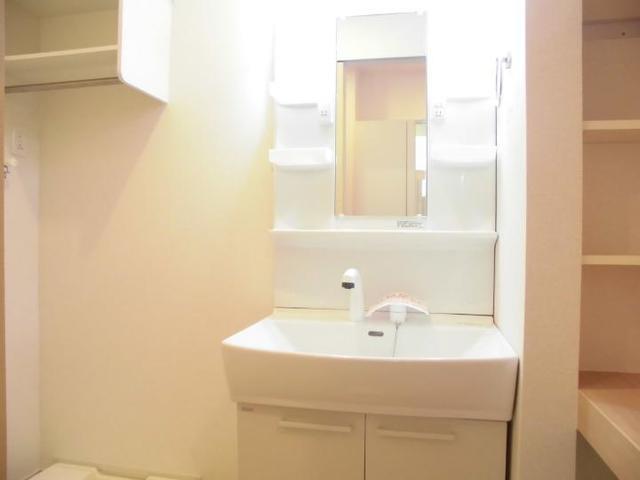 ラフォーレ足利Ⅱ 01030号室の洗面所