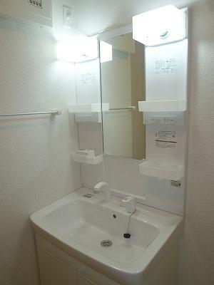 グリーンエバー 01040号室の洗面所