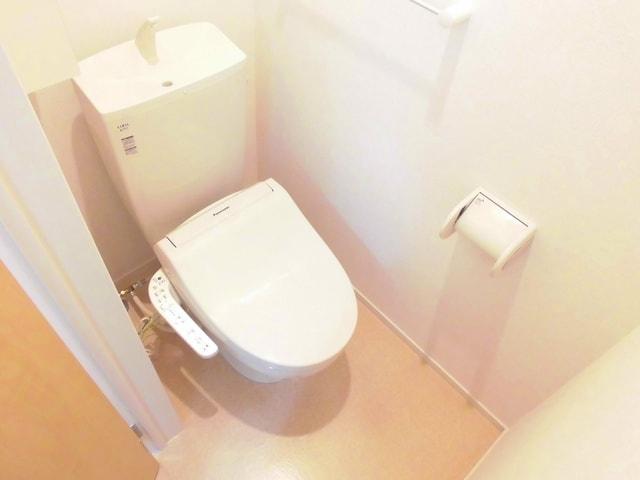 マリアパレスA 01020号室のトイレ