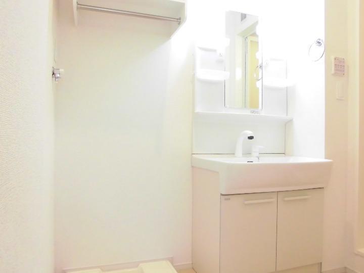 マリアパレスA 01020号室の洗面所