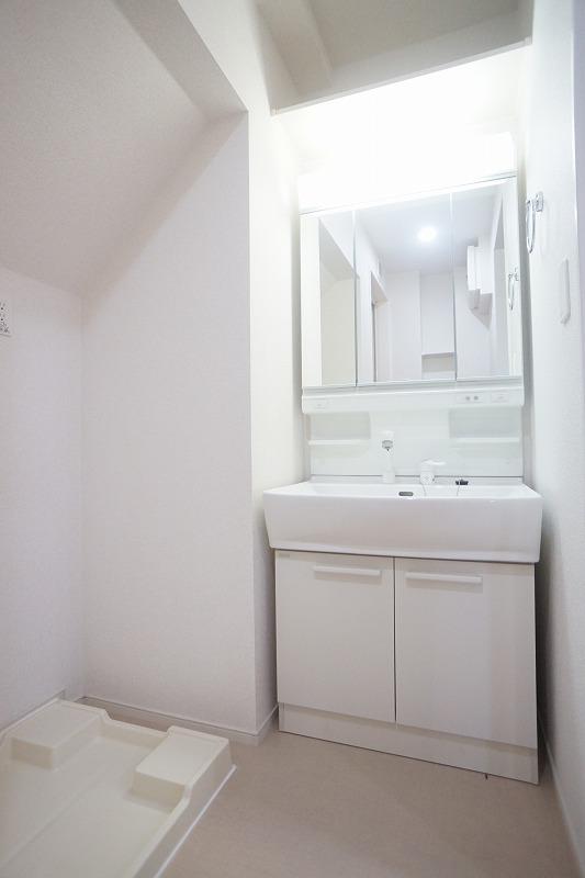 フィリアB 01010号室の洗面所