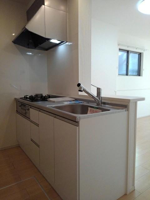 プラシード豊D 01010号室のキッチン