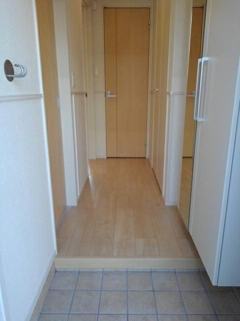プラシード豊D 01010号室のトイレ