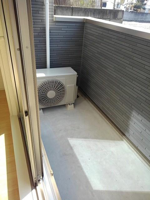 プラシード豊D 01010号室の玄関