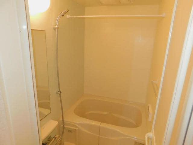 メゾン・ド・yu Ⅱ 01010号室の風呂